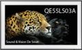 QE55LS03A